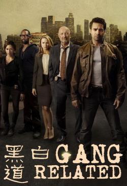 Gang Related S01,美剧《正邪之间,黑白无间道》第一季10集全集(720P)