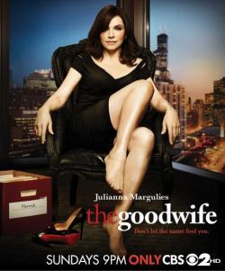The Good Wife Season 3,美剧《傲骨贤妻》第三季22集全集(720P)