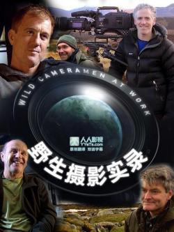 BBC Wild Cameramen at Work,BBC 野生摄影实录[全四集](720P)