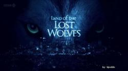BBC Land of the Lost Wolves,BBC 失落之地狼群[全2集](720P)