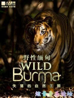 wild burma natures lost kingdom,BBC 野性缅甸:失落的自然王国[全3集](720P)