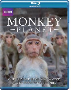 Monkey Planet,BBC 灵长星球[全3集](720P)