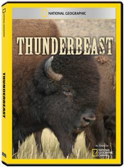 National Geographic Special Thunderbeast,国家地理:美洲野牛求生录(720P)