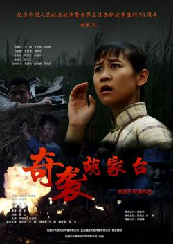The Taking of Hujiatai,奇袭胡家台(1080P)