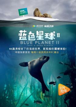 Blue Planet II,[纪录]《蓝色星球》第二季7集全集(1080P)