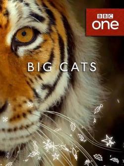 Big cats,大猫,大虫(全3集)(1080P)