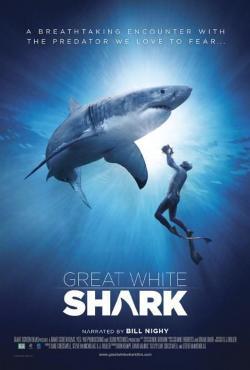 Great White Shark,大白鲨(1080P)