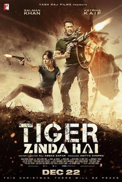 Tiger Zinda Hai,老虎是活的,猛虎还活着(蓝光原版)