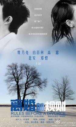 ZJTV The Rules Before A Divorce,中剧《离婚前规则》40集全集(720P)