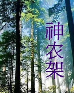 Natural Language Shen Nong Jia,自然密语—神农架(1080i)