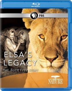 PBS,PBS纪录片 13部合集(720P)