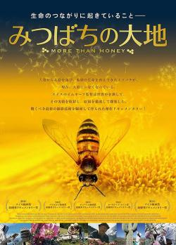 documentary,经典纪录片 25部合集(720P)