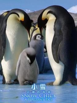Snow Chick - A Penguins Tale,帝企鹅宝宝的生命轮回之旅,小雪:一只企鹅的故事(蓝光原版)