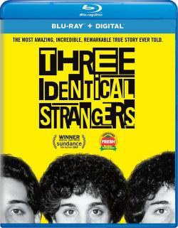 Three Identical Strangers,孪生陌生人(蓝光原版)