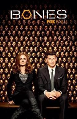 bones S09,美剧《识骨寻踪》第九季24集全集(720P)