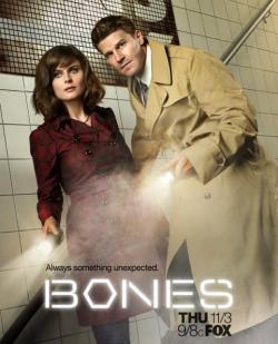 Bones S01,美剧《识骨寻踪》第一季22集全集(720P)
