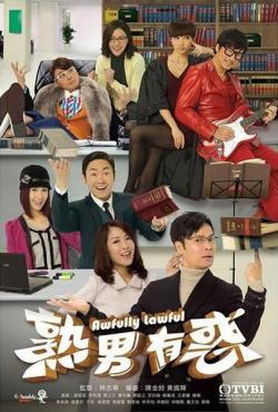 Awfully Lawful,港剧《熟男有惑》20集全集(720P)