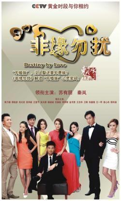 CCTV1 Destiny by Love,中剧《非缘勿扰》30集全集(720P)