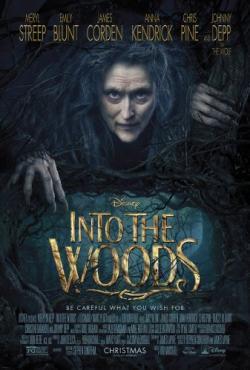 Into the Woods,魔法黑森林,拜访森林,走进森林(720P)
