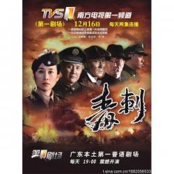 CCTV Stinger,中剧《毒刺》31集全集(720P)